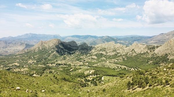 Puig Campana, co warto zobaczyć w regionie Walencji?